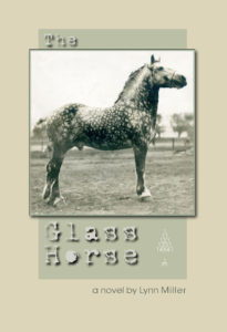 glasshorse.WEBCVR